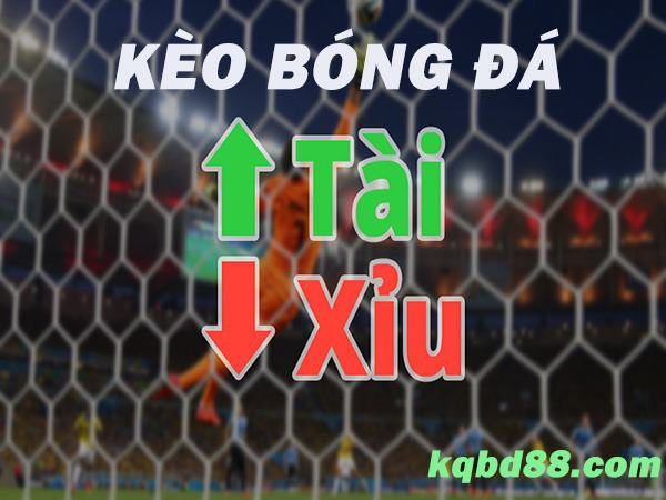 keo-tai-xiu-la-gi-cach-doc-keo-tai-xiu-chinh-xac-nhat