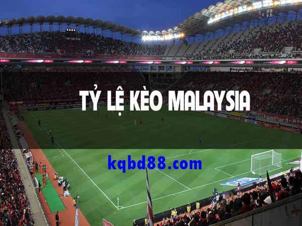 ty-le-keo-malaysia-la-gi-huong-dan-cach-dat-keo-malaysia-chuan